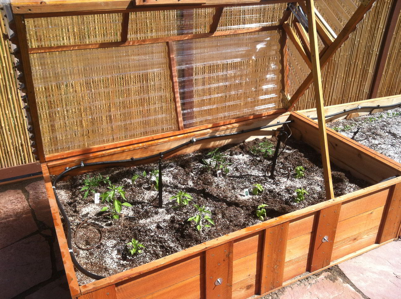 A Raised Bed Garden with Cold Frame and Drip Irrigation - Cold Climate