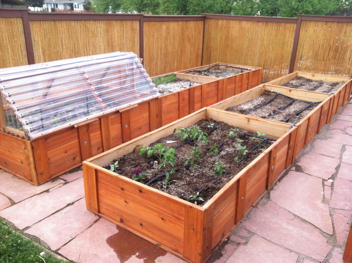 Raised bed garden with attached cold frame, drip irrigation and flagstone pathways.