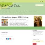 Salt Wash Studio Website by Aaron Jerad Designs