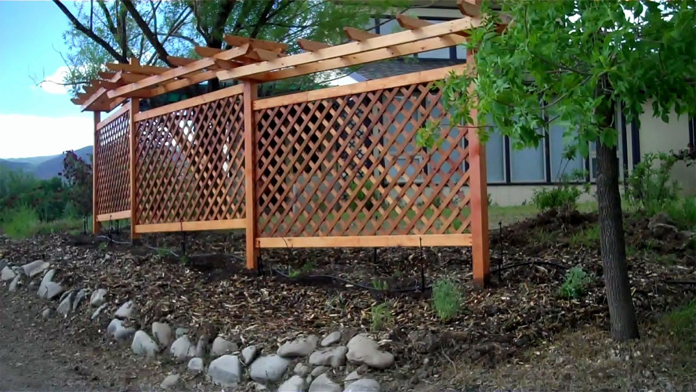 Grape Trellis in Edible Landscape