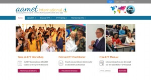 An image of the AAMET International website designed by Aaron Jerad
