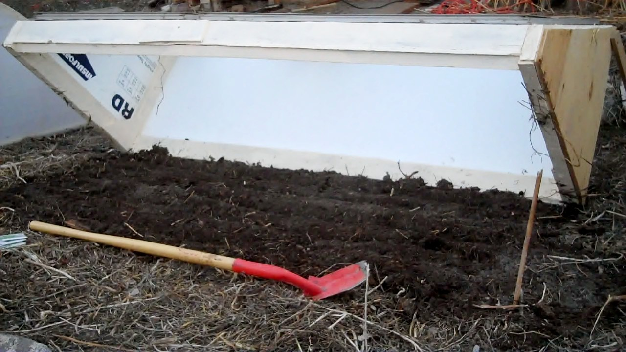 Prepping the soil and planting in the cold frame.