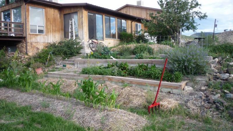 Permaculture Garden Conversion